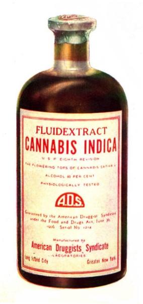 Cannabis – ein neuer Trend oder alte Medizin? Teil 2 | Vaporizer Blog | VAPSTORE®