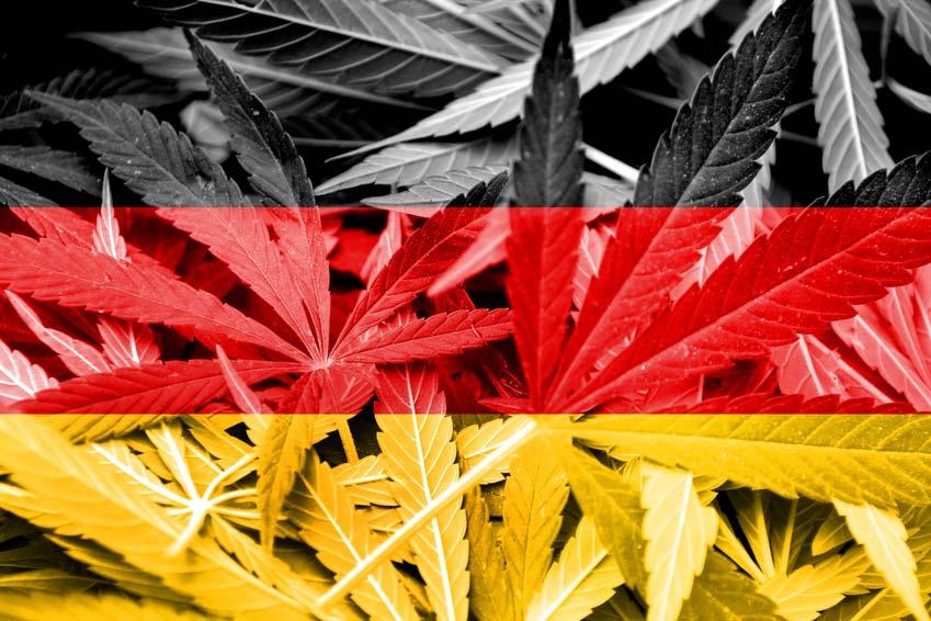 Cannabis-Legalisierung nach der Bundestagswahl